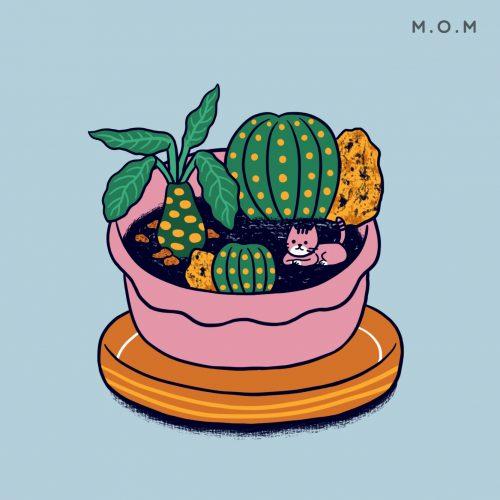cactus_web_5